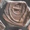 """The Living Sculpture"" Detail 1"