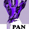 PAN - Professional Artists Network